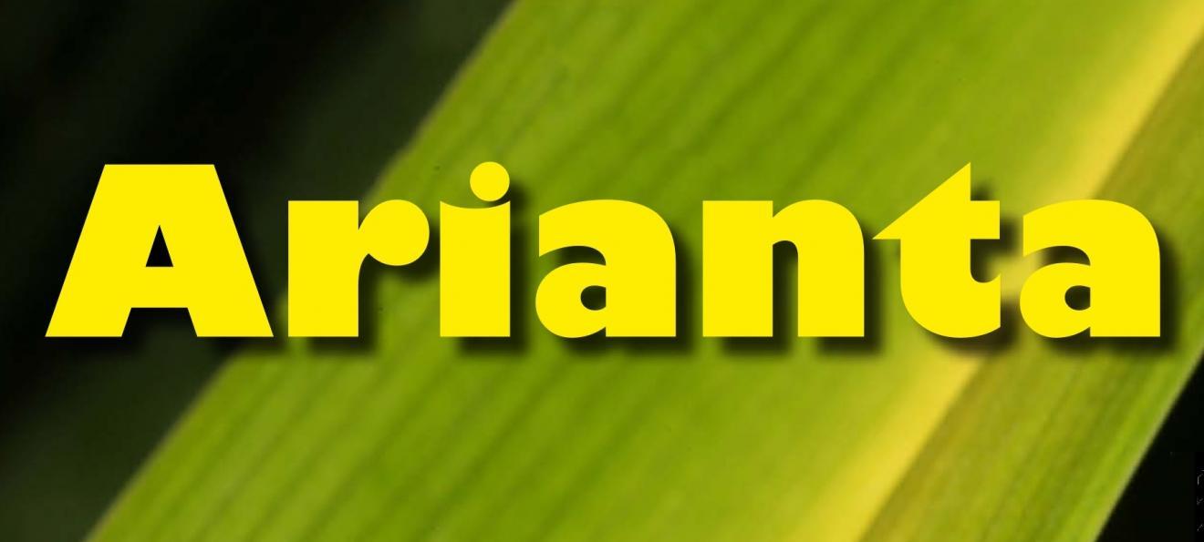 Aufruf zum Einreichen von Manuskripten für Arianta 8